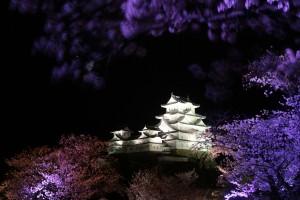 姫路城 ライトアップ